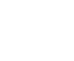 Youth Enhancement Systems Logo